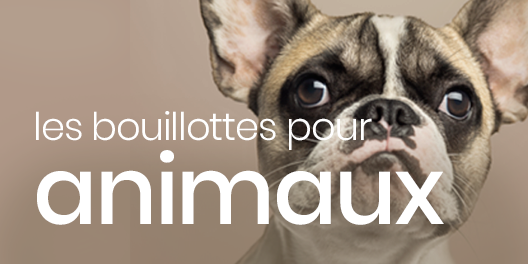 bouillotes-animaux.png
